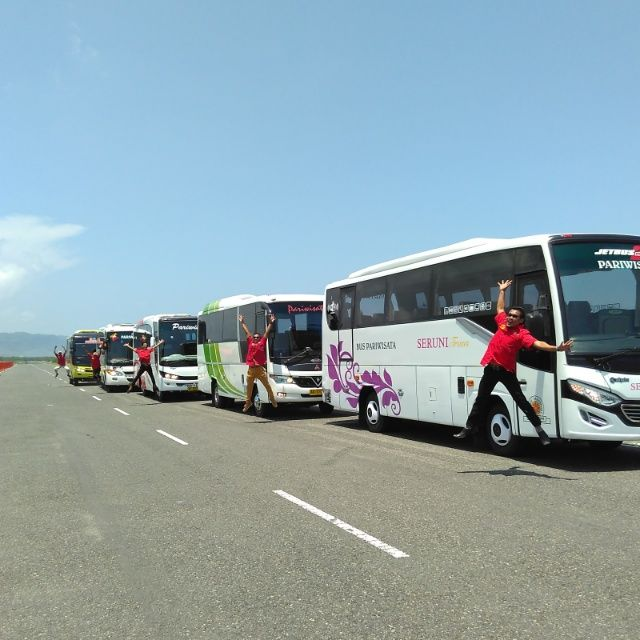 Sewa Bus Pariwisata di Yogyakarta Harga Mulai 1,3 juta / day - coba Telp 087838844356 | Sewa Bus Jogja