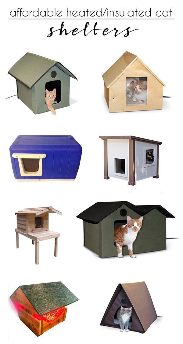 Diy Heated Igloo For Feral And Stray Cats Outdoor Cat Shelter Cat Shelters For Winter Cat Shelter