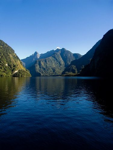 """DOUBTFUL SOUND More isolated than the popular Milford Sound, this fiord is sometimes known as """"the sound of silence."""" Nearly 1,400 meters deep. Not uncommon to see wildlife such as Fiordland crested penguins, bottlenose dolphin, fur seals, etc. Not accessible by roads. Companies Go Orange (smaller tour) and RealJourneys offer day-long boat trips. $225+ NZD/adult leaving from Te Anau or Qtown."""
