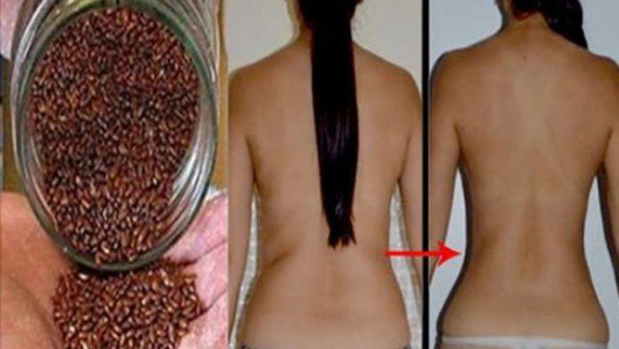 Мы все хотим иметь красивые и здоровые волосы. Есть много лечения, чтобы заставить расти ваши быстрее, сильнее. Существует различные методы лечения против выпадения волос. Но прежде чем тратить...