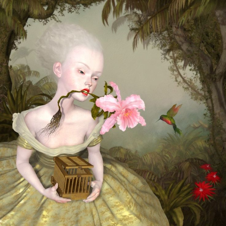 the collector study - Ray Caesar - Gallery