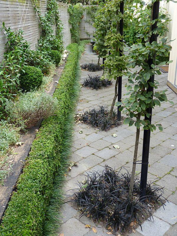 Garden Design Nursery 770 best *garden: design i images on pinterest | landscaping