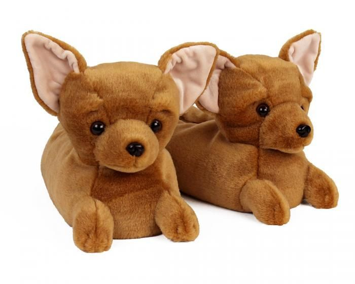 Chihuahua Slippers Chihuahua Dog Lovers Cute Dogs