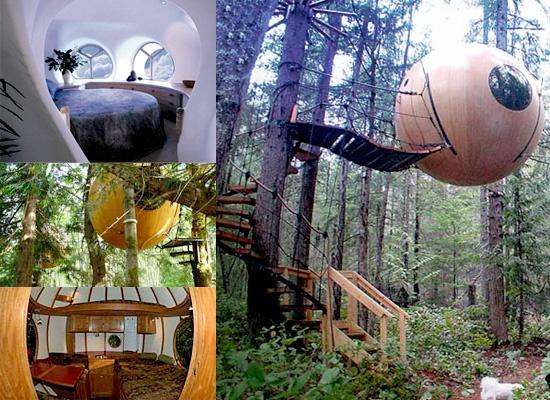 Sphere Tree House