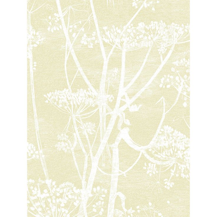 Buy Cole U0026 Son Cow Parsley Wallpaper | John Lewis