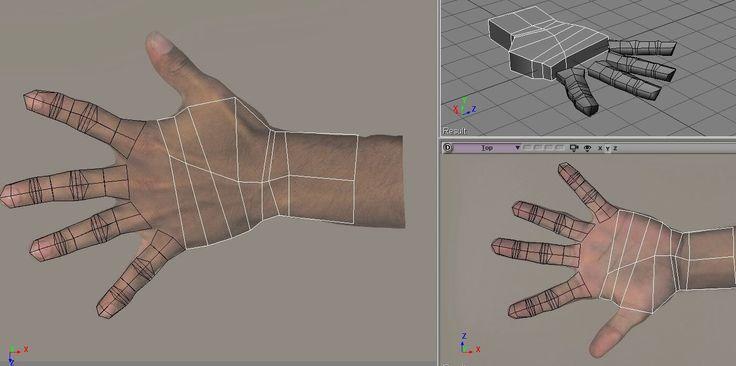 human hand topology 1-2