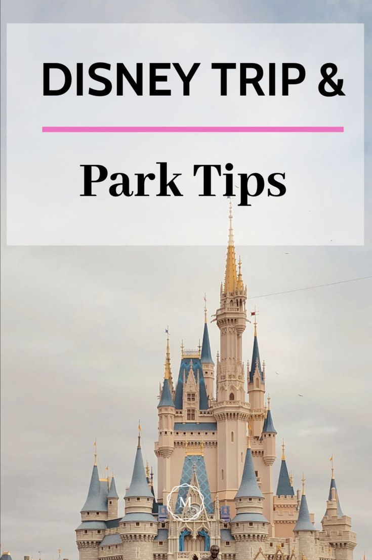 What To Wear To Disney World 3 Day Outfits The Mindful Choice Disney World Disney Trips Packing Tips For Travel