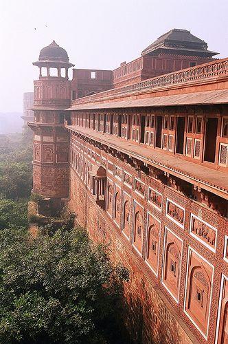 The Red Fort, Agra - INDE    Comme si le temps s'arrêtait dans cet immense jardin où les animaux côtoient les hommes en toute sérénité...