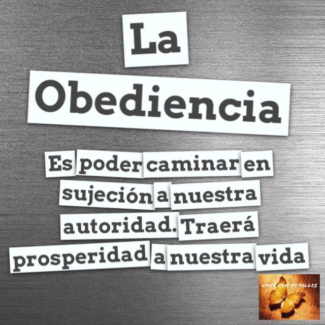 Obediencia | detalles para ti