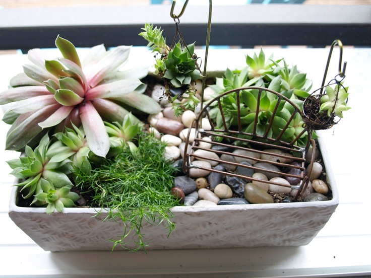 109 Best Mini Gardens Images On Pinterest Miniature Small