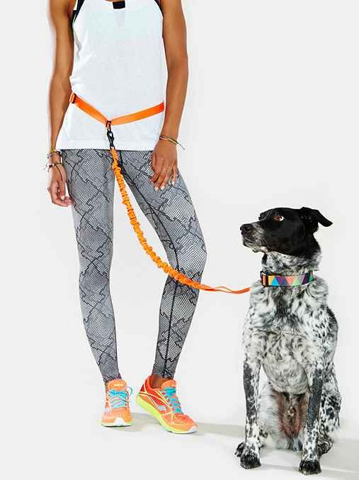 Awesome for every #runner out who wants to be hands free. #dog #accessories