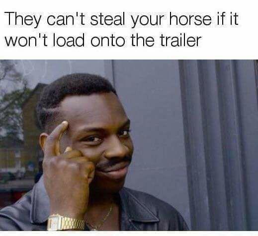 Haha, je paard dus beter niet leren om in de trailer te gaan.