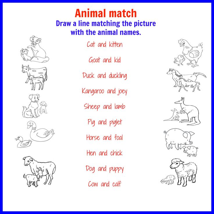 animals name with picture in english pdf