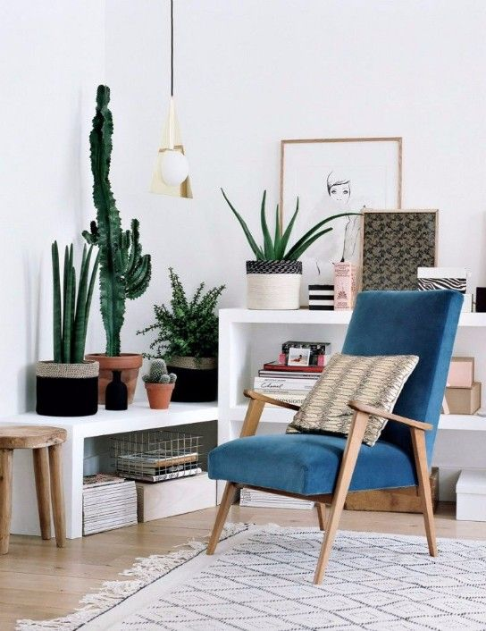 Happy Living Room Ideas With Plants