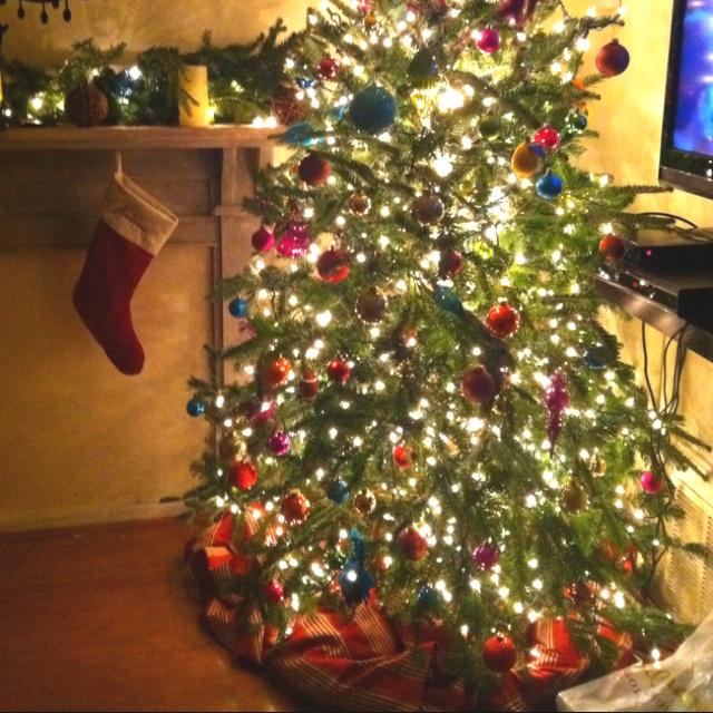 Christmas tree!: Casa Sas, Christmas Trees