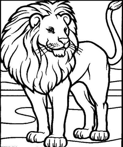 lion coloring pages lion pictures coloring pages for kids visit freecoloringinfo - Animal Coloring Pages For Preschoolers