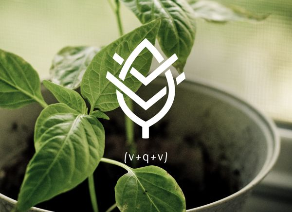 VQV Identity by Lisa Nemetz, via Behance  An organic food restaurant