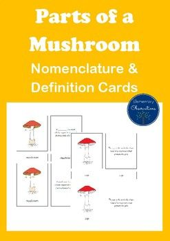Montessori nomenclature and definition cards for parts of a mushroom - can be used as three part or five part cards - perfect for revising and consolidating knowledge of the parts of a mushroom. Pack also includes black line master sheet. You may also like in this series: Parts of the Mushroom ChartsParts of the Mushroom Booklet...