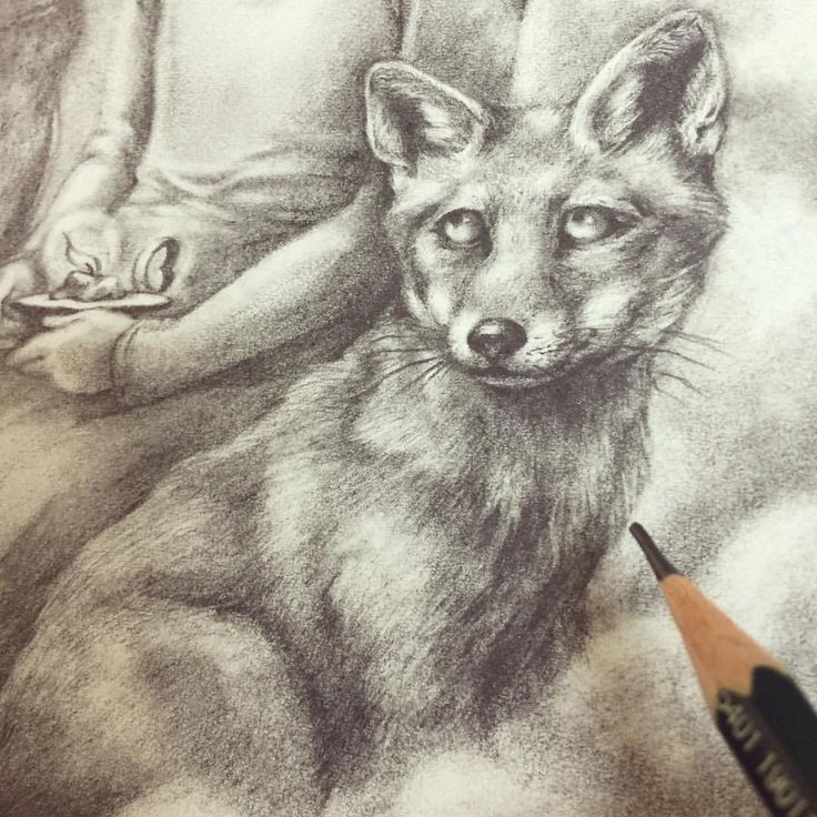 "Eeva Nikunen (@eevanikunen) on Instagram: ""Sneak peek of a graphite piece I'm working on for the @changelingartist 'Stardust' art auction that…"""