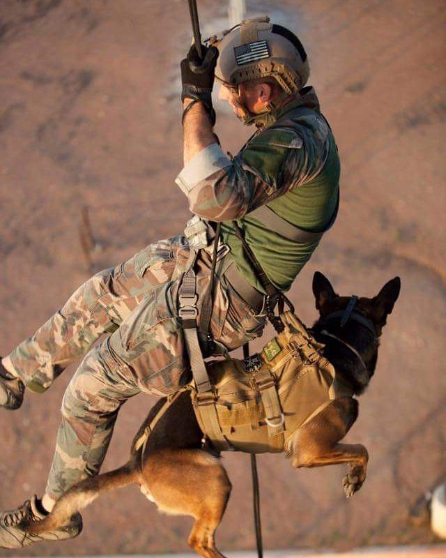 Military War K9 Training - Thank you for your service K9 Hero! You are not FORGOTTEN!!! Prayers for you always.