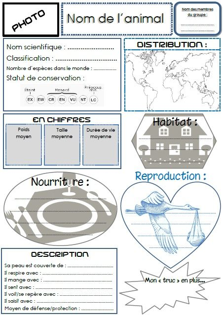 Pour faire un expos sur un animal animaux et blog - Comment fabriquer une coupe du monde en papier ...