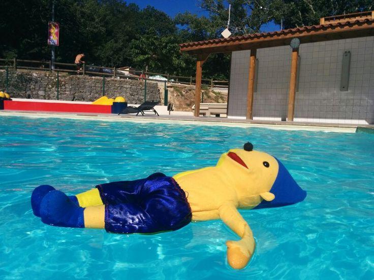 Vakantie avonturen van Pom Pom ;-) (rkbs de Vlieberg, Den Helder) lekker zwemmen
