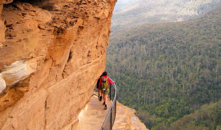 National Pass walk, Blue Mountains National Park. Photo: Craig Marshall Copyright:NSW Government