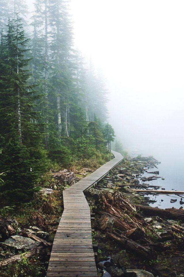 wolverxne:  Foggy Lake Twenty Two - Washington | by: { Tanner Wendell Stewart }