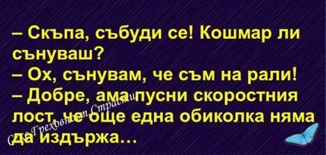 Drogo Zaxen - Pal.bg