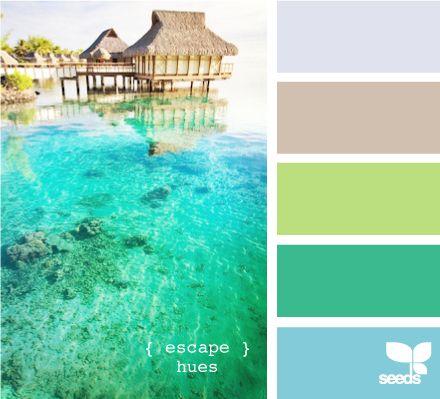 escape huesBeach Colors, Color Palettes, Bathroom Colors, Bedrooms Colors, Escape Hues, Colors Palettes, Colors Schemes, House Colors, Painting Colors