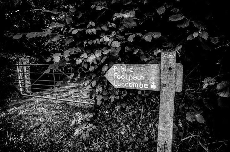 Fancy a stroll on #Exmoor today?  Photo by Mark Stothard - http://msp.im/1lS29xp