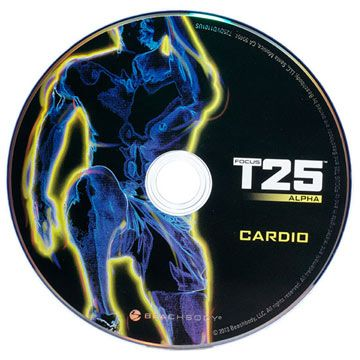 The Best Workout DVDs to Firm and Burn: Shaun T's Focus T-25