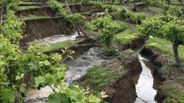 Bill ✔️  Earthquake damage to Burkhart Estate, south of Blenheim, Marlborough New Zealand. A massive M7.8 earthquake hit Kaikoura, New Zealand on 14 November 2016.    Bill Gibson-Patmore.  (curation & caption: @BillGP). Bill😄✔️