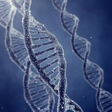 DNA signature found in ice storm babies - http://scienceblog.com/74581/dna-signature-found-ice-storm-babies/