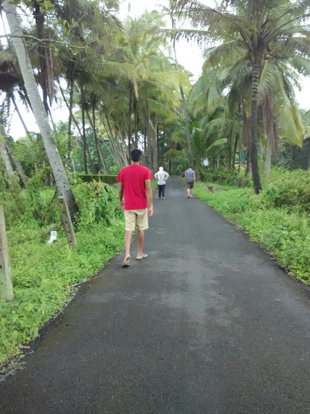 Morning Meditative walk