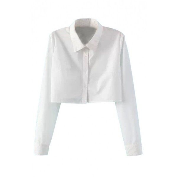 LUCLUC White Band Collar Long Sleeve Blouse (€15) ❤ liked on Polyvore featuring tops, blouses, shirts, lucluc, crop tops, cropped white blouse, long sleeve crop top, shirts & tops, longsleeve shirt and white crop shirt