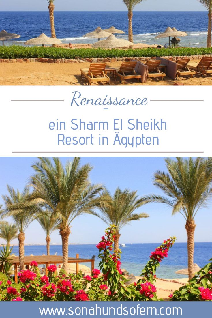 """Ein tolles Resort in """"gypten am Roten Meer das 5Sterne Hotel Renaissance in Sharm El"""