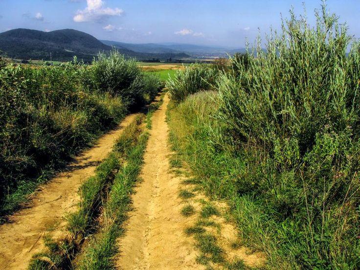 Szlak ku radości.  The trail to joy.