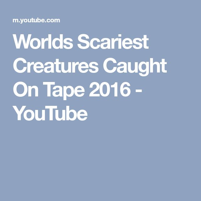 Worlds Scariest Creatures Caught On Tape 2016 - YouTube