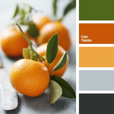 Colors of the orange tree. A tandem of orange and dark green colors successfully combined with black. Silver-gray brings a touch of modernity, shading the warm hues. A winning selection of colors for library interiors.