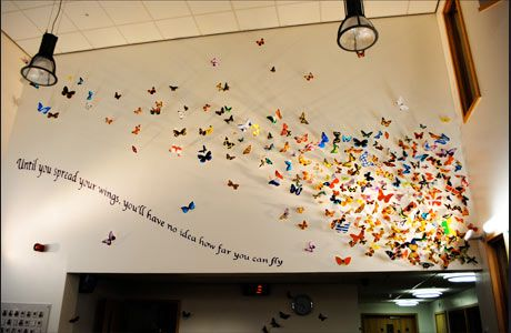 "Primary Schools Arts Education Projects | No Added Sugar ""Until you spread your wings, you have no idea how far you can fly."""