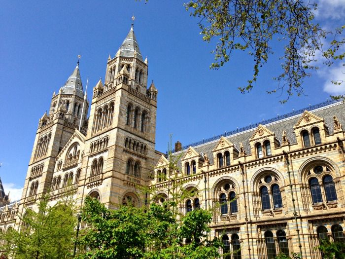 Spend a couple of hours at the Natural History Museum
