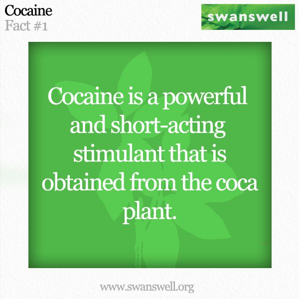 a description of cocaine as a drug obtained from the coca plant Description in its most common cocaine a powerful local anaesthetic obtained from the leaves of the coca plant it is a controlled drug which is highly addictive.