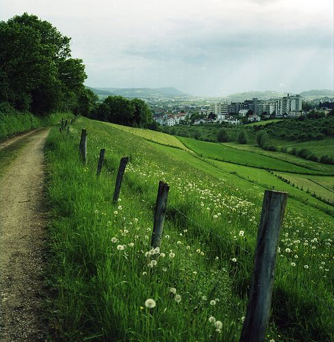Germany. Cannot wait to explore the beautiful country side this summer (: