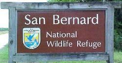 San Bernard National Wildlife Refuge  Texas