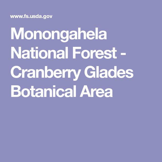 Monongahela National Forest - Cranberry Glades Botanical Area