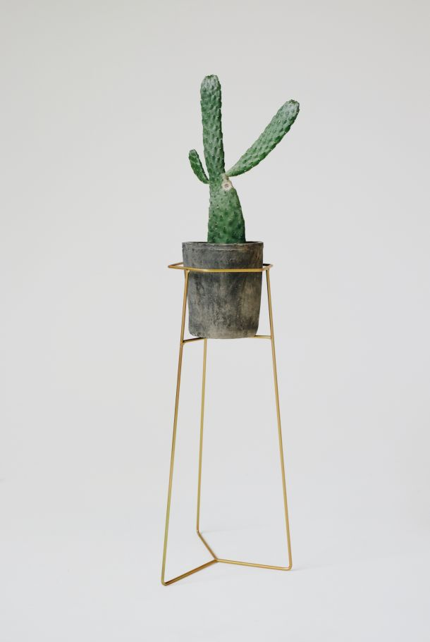 NEW Matte Gold finish pot plant stand. A collaboration between Trestle Union x Studio Home // New Zealand - available online // Shot by and featured on Studio Home - creative brands from the lands down under
