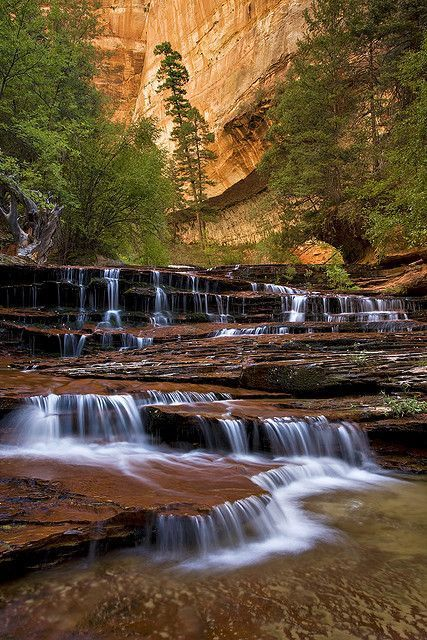 Many visitors to Zion National Park are directed to Zion Canyon and never get the chance experience some of the special surprises hidden on the east side of the park. Zion Cascades by Stephen Oachs