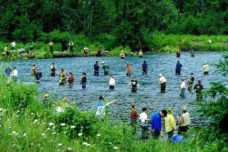 52 best alaska fishing images on pinterest alaska for Russian river fishing