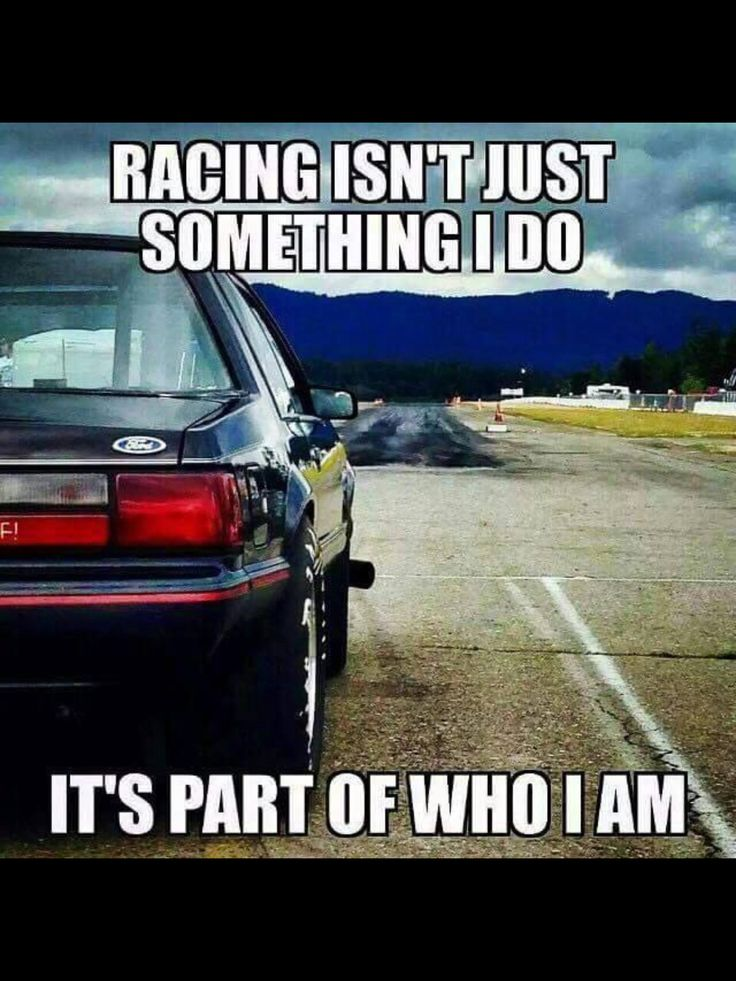 149 Best Funny Car Quotes Images On Pinterest Funny Cars Do You